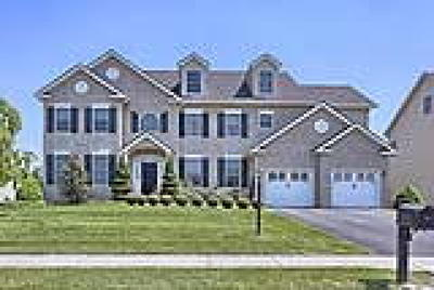 Wyomissing Single Family Home ACTIVE: 1611 Ethan Drive