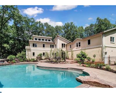 Shillington Single Family Home ACTIVE: 6 Hidden Pond Drive