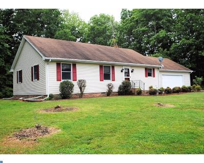 Smyrna Single Family Home ACTIVE: 1642 Vandyke Greenspring Road