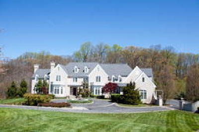 Centreville Single Family Home ACTIVE: 111 Centrenest Lane