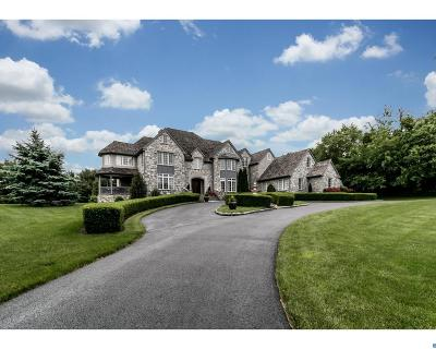 Centreville Single Family Home ACTIVE: 316 Pentland Drive