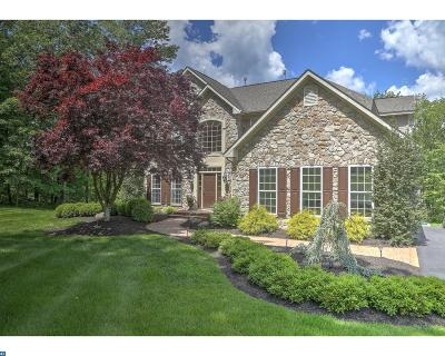 New Hope Single Family Home ACTIVE: 6745 Point Pleasant Pike