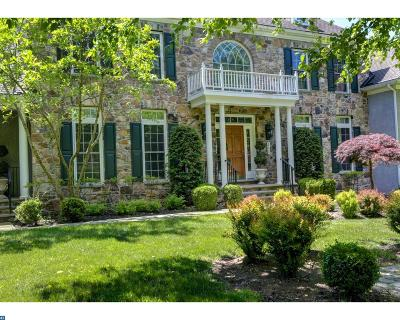 Phoenixville Single Family Home ACTIVE: 260 Valley Park Road