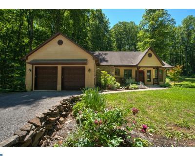New Hope Single Family Home ACTIVE: 1263 Eagle Road