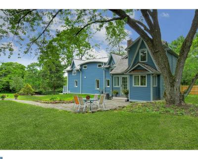 Princeton Single Family Home ACTIVE: 28 County Road 518