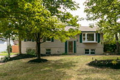 Gloucester Twp, Sicklerville Single Family Home ACTIVE: 11 Kay Lane