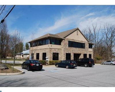 Malvern Commercial ACTIVE: 519 Lancaster Avenue #3