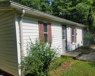 Mohnton Single Family Home ACTIVE: 1756 Lake Shore Drive