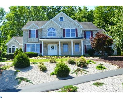 Birdsboro Single Family Home ACTIVE: 260 Pathfinder Drive