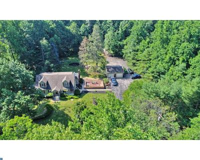 Mohnton Single Family Home ACTIVE: 3349 Plow Road