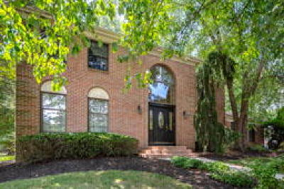 Single Family Home ACTIVE: 11 Hidden Acres Drive