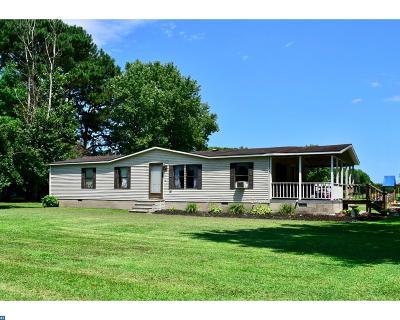 Delmar Single Family Home ACTIVE: 36753 Bi State Boulevard
