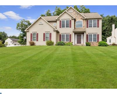 Coatesville Single Family Home ACTIVE: 223 Sandy Way