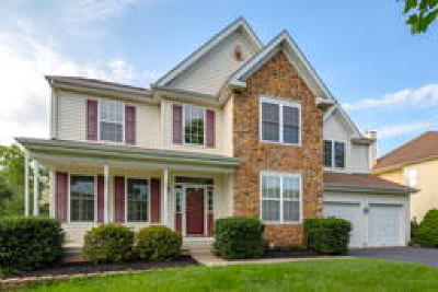 New Hope Single Family Home ACTIVE: 247 Creekside Drive