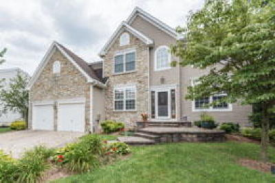 Single Family Home ACTIVE: 43 Cranberry Lane