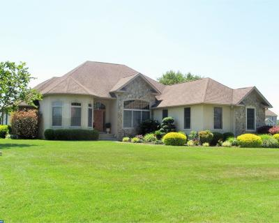 Dover Single Family Home ACTIVE: 248 Fawn Haven Walk