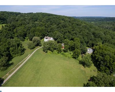 Phoenixville Single Family Home ACTIVE: 511 Merlin Road