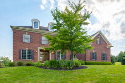 New Hope PA Single Family Home ACTIVE: $899,000