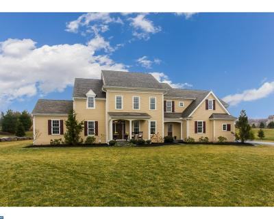 Phoenixville Single Family Home ACTIVE: 125 Waverly Circle