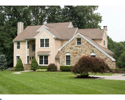 Downingtown Single Family Home ACTIVE: 1353 Skelp Level Road