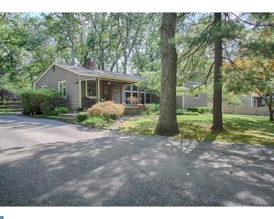 Medford Lakes Single Family Home ACTIVE: 163 Cheyenne Trail