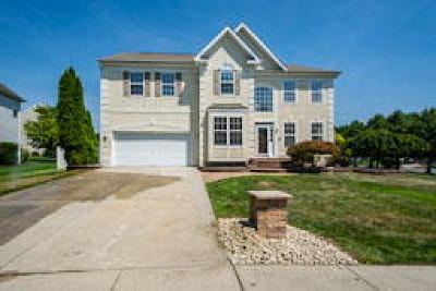 Single Family Home ACTIVE: 29 Meadowview Drive