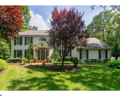 Medford Single Family Home ACTIVE: 6 Chelmsford Court
