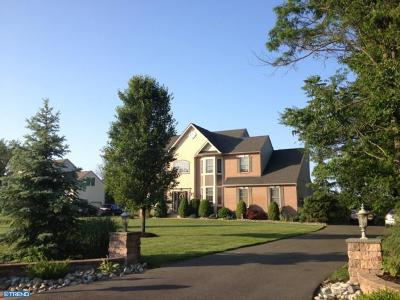 Swedesboro Single Family Home ACTIVE: 119 Palmer Place