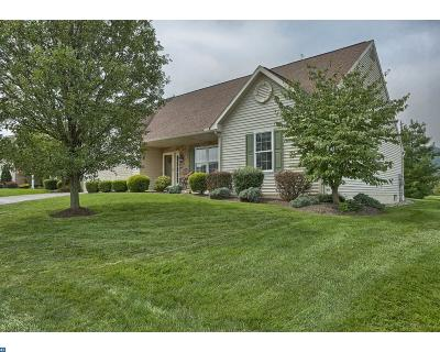 Sinking Spring Single Family Home ACTIVE: 114 Day Lily Drive
