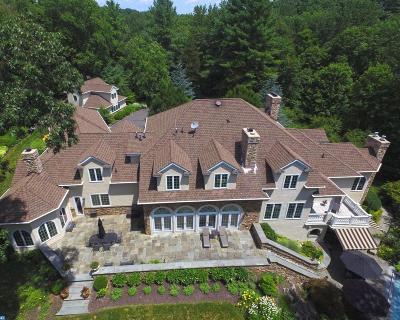 Erwinna PA Single Family Home ACTIVE: $2,949,000
