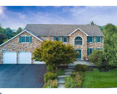 Sinking Spring PA Single Family Home ACTIVE: $393,000