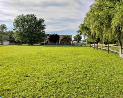 Milton Single Family Home ACTIVE: 27331 Martin Farm Road
