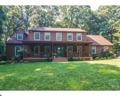 Doylestown Single Family Home ACTIVE: 2968 Valley View Drive