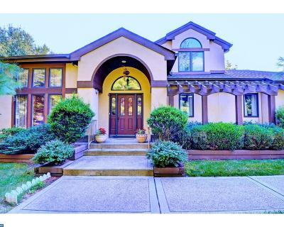 Princeton Single Family Home ACTIVE: 313 Sayre Drive
