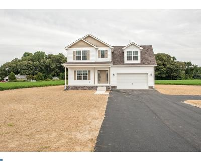 Milford Single Family Home ACTIVE: 915 Meadow Brook Lane