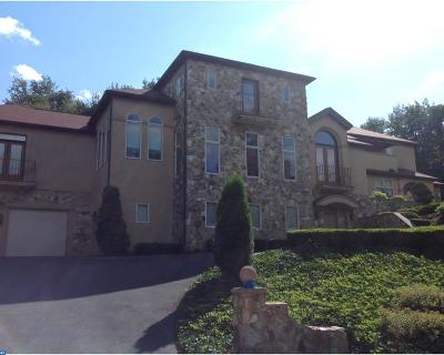 Wyomissing Single Family Home ACTIVE: 101 Robert Road