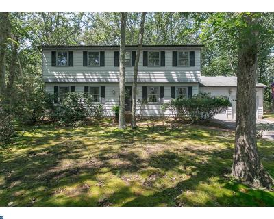 Medford Single Family Home ACTIVE: 5 Village Court