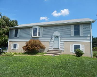 Smyrna Single Family Home ACTIVE: 203 Canvasback Court