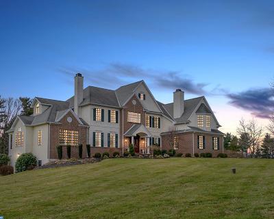 Newtown Single Family Home ACTIVE: 46 Thornbird Way