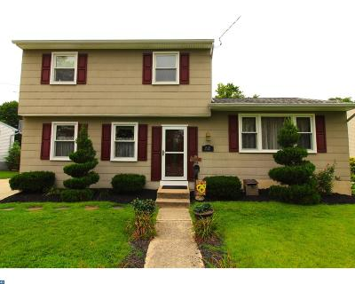 Williamstown Single Family Home ACTIVE: 28 Walter Drive