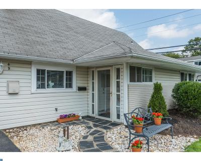 Levittown Single Family Home ACTIVE: 49 Hydrangea Road