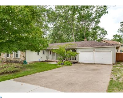 Berlin Single Family Home ACTIVE: 14 Evergreen Drive