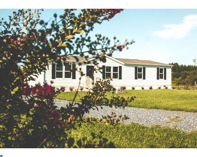 Marydel Single Family Home ACTIVE: 250 Wheat Drive