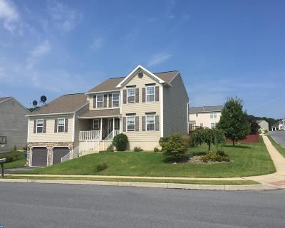 Sinking Spring Single Family Home ACTIVE: 101 Crestview Drive