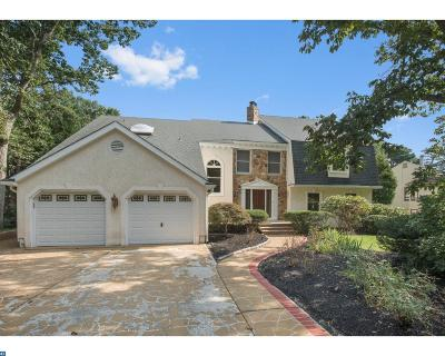 Voorhees Single Family Home ACTIVE: 4 Woodstone Drive