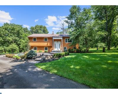 Princeton Single Family Home ACTIVE: 140 Old Georgetown Road