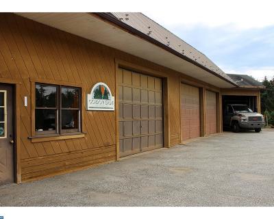 Phoenixville Commercial ACTIVE: 435 Valley Park Road