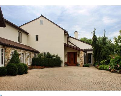 Phoenixville Single Family Home ACTIVE: 435 Valley Park Road
