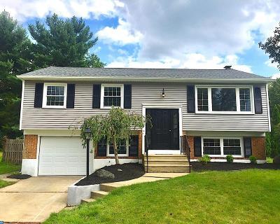 NJ-Camden County Single Family Home ACTIVE: 300 Fairmount Avenue