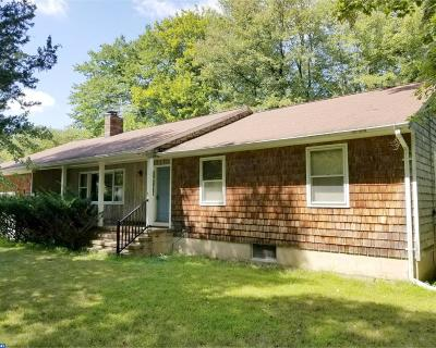 Hopewell Single Family Home ACTIVE: 19 Crestview Drive